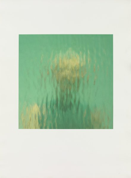 Portrait of the artist, distorted as if under water or through irregular glass. Image has a green tint.