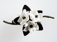 Wedgwood bone china and metal flower brooch with white flowers against black leaves.