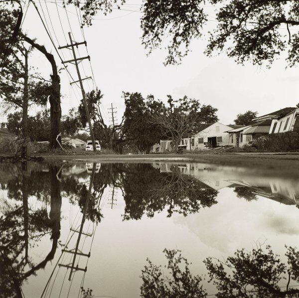 Flooded street with damaged houses and trees.
