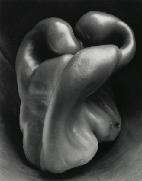 This black-and-white image shows a pepper.