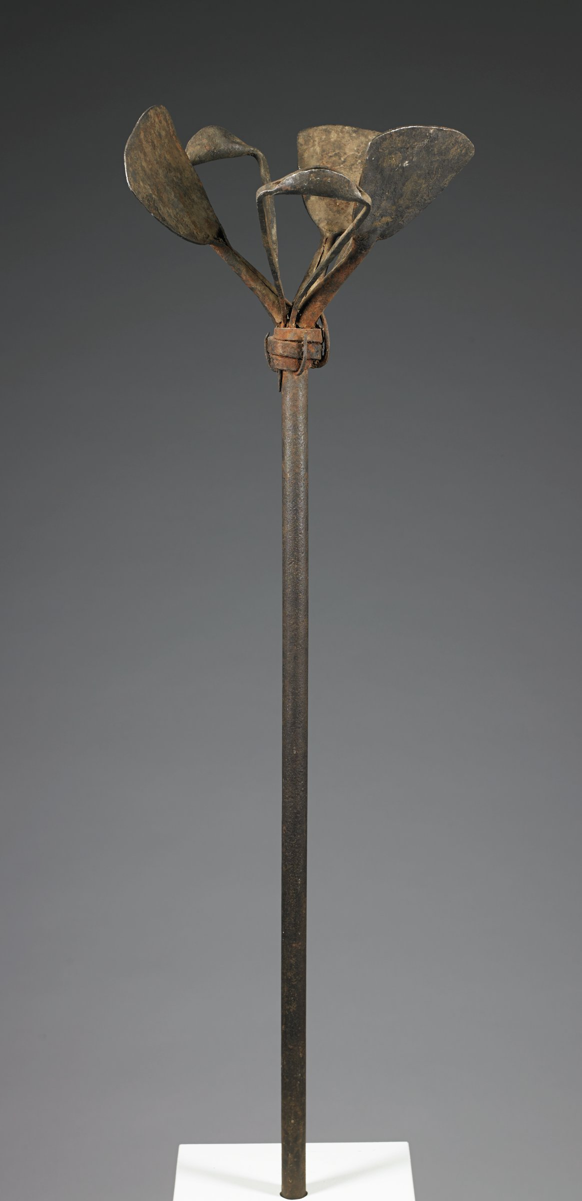 Vertical iron pole with six iron currency objects attached at top; three objects are iron hoe-blade currencies, and three are possibly rattles, hoe-shaped but open in center and with an enclosed portion that could have held percussive elementsFunction: Currency staffs constitute a display of wealth; if it is Fulani, it would have been owned by settled Fulani rather than nomadic herders.