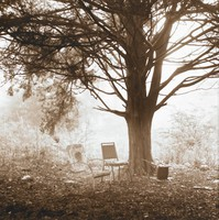 People's Park, Diana C. Young, duo-toned gelatin silver print
