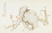 Plum and Rocks, Luo Anxian, ink and color on silk