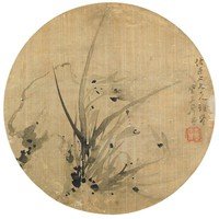 Orchids and Rocks, Zhu Lian, ink on silk