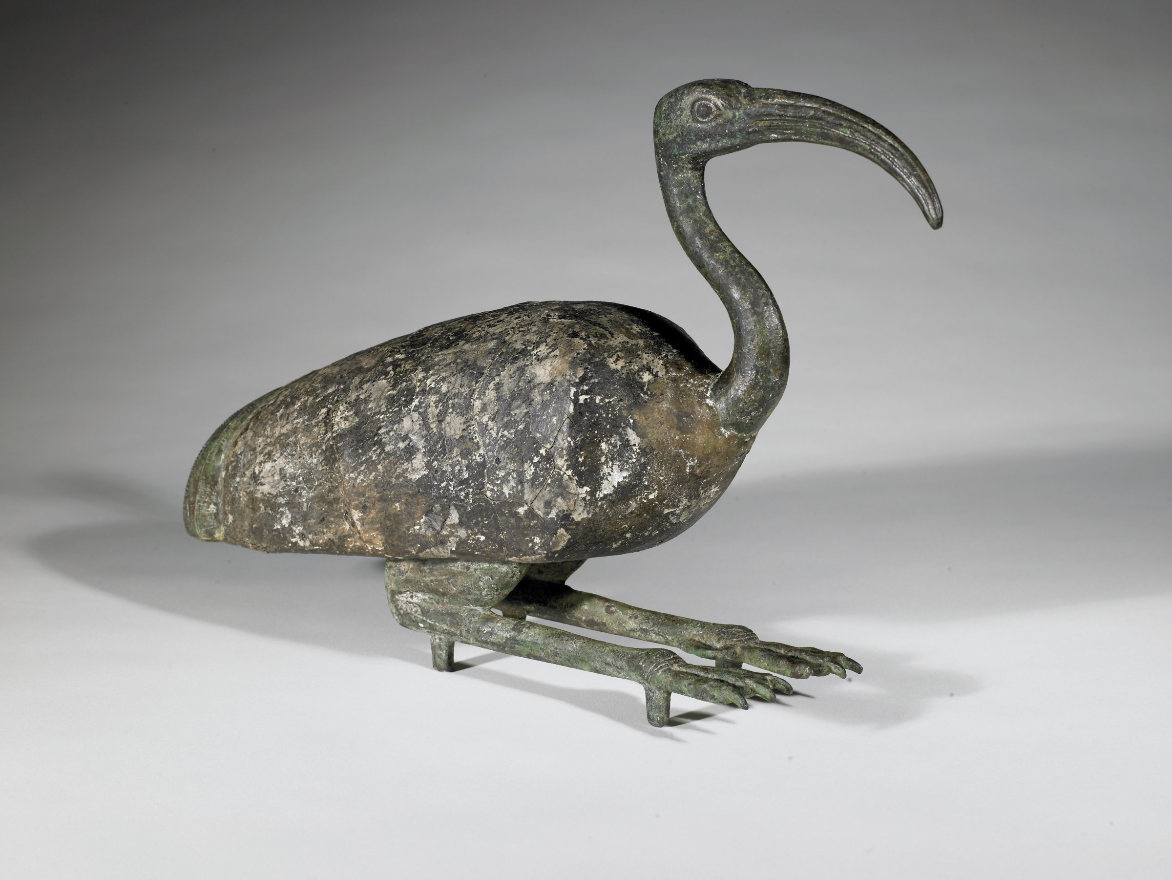 Seated Ibis with painted wooden body; cast bronze legs and feet, head and neck.